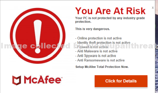 McAfee You Are At Risk